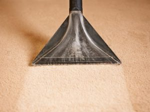 cheap carpet cleaners ipswich qld